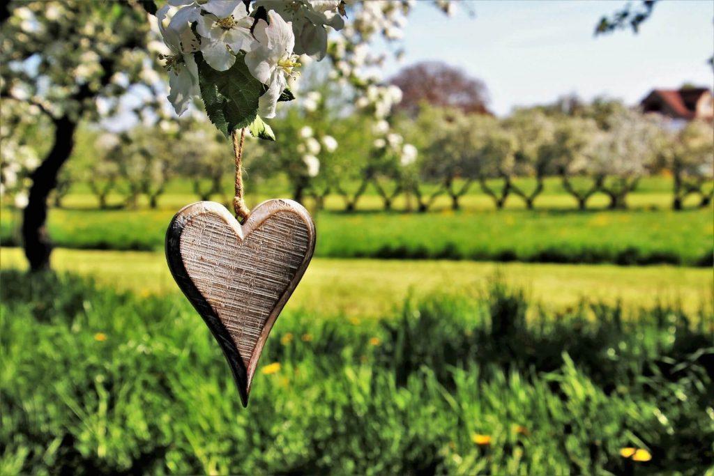 Alles voor een landelijke tuin; 4x inspiratietips